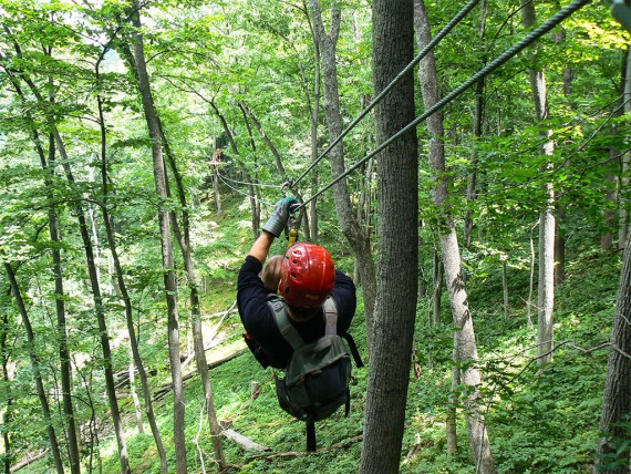 man ziplining through trees